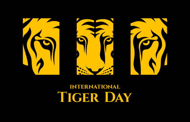 stockillustraties, clipart, cartoons en iconen met international tiger dag. - tijger