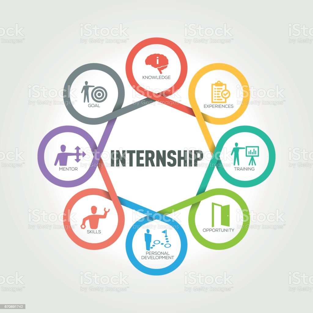 Internship infographic with 8 steps, parts, options vector art illustration