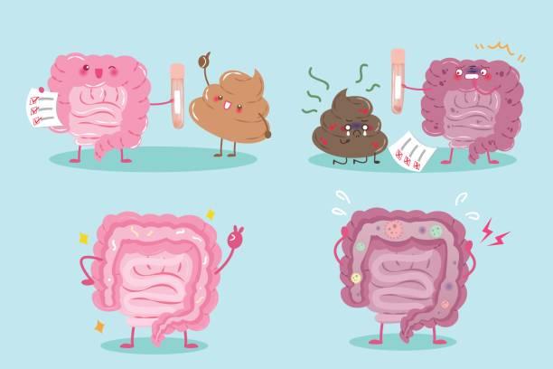 darm mit gesundheitskonzept - keks grafiken stock-grafiken, -clipart, -cartoons und -symbole