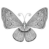 Intricate detailed butterfly adult grown up coloring page. Stress / relaxing.