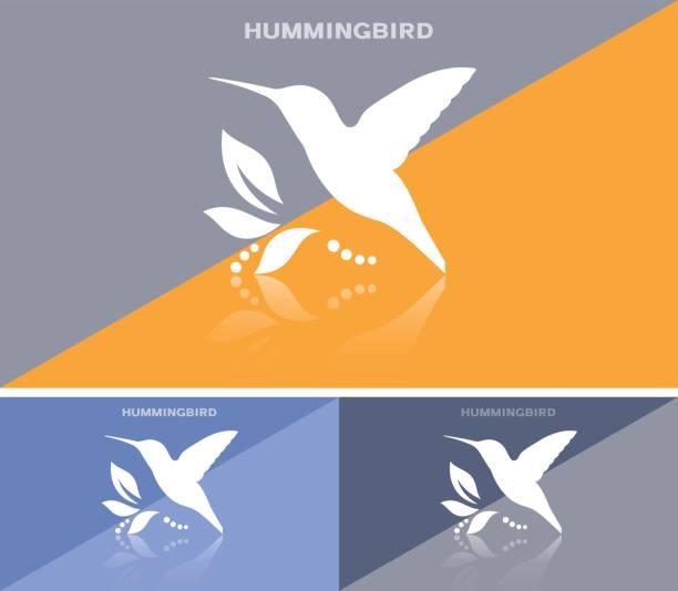 invitational card or web banner with humming bird icon - hummingbird stock illustrations