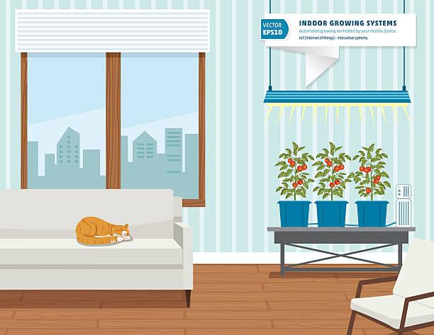 iot hydroponic indoor growing systems concept - gartensofa stock-grafiken, -clipart, -cartoons und -symbole