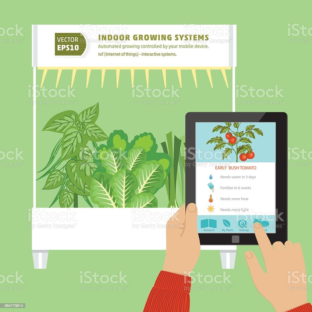 Iot Hydroponic Indoor Growing Systems Concept Stock