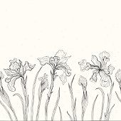 Iris. Abstract floral background.
