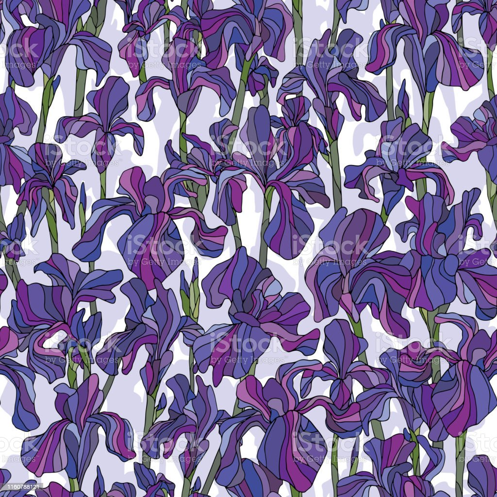 Iris Flowers Hand Drawn Vector Seamless Pattern Nature Petals