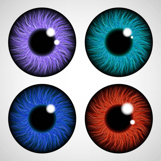 ilustrações de stock, clip art, desenhos animados e ícones de iris of the eye. isolated on light background. various colored eye lenses. realistic vector illustration. - contacts