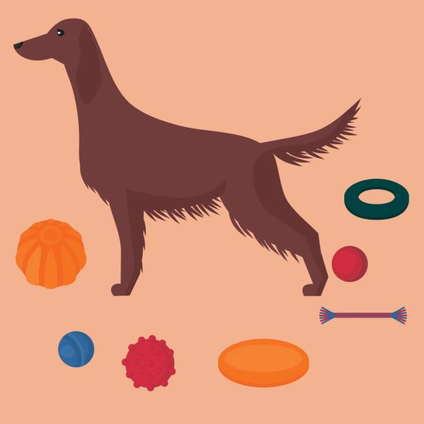 Best Frisbee Illustrations, Royalty-Free Vector Graphics