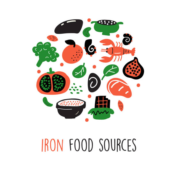 Iron food sources. Vector cartoon illustration of iron rich foods Round composition. Iron food sources. Vector cartoon illustration of iron rich foods Round composition anemia stock illustrations
