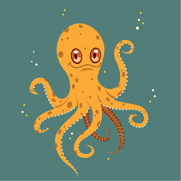 o is for octopus - octopus stock illustrations