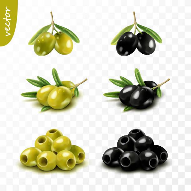 ilustrações de stock, clip art, desenhos animados e ícones de isolated 3d green and black olives with leaves, seedless, realistic vector set - mediterranean food