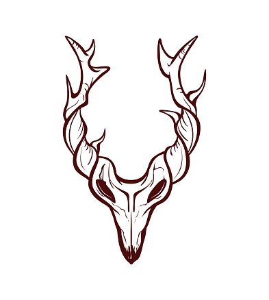 Isolated animal skull with branched horns. Outline