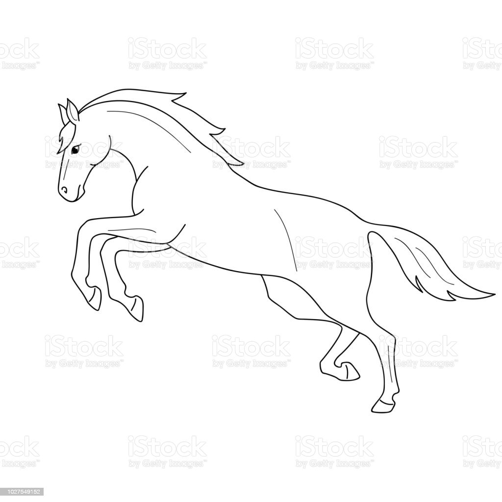Isolated Black Outline Galloping Jumping Horse On White Background Side View Curve Lines Page Of Coloring Book Stock Illustration Download Image Now Istock