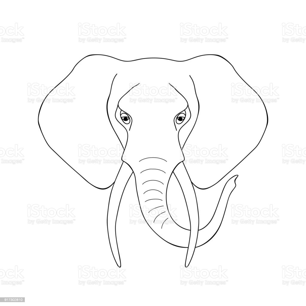 isolated black outline head of african elephant on white. Black Bedroom Furniture Sets. Home Design Ideas