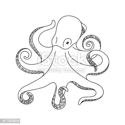 Isolierte Schwarzen Umriss Monochrome Oktopus Auf Weißem Hintergrund ...