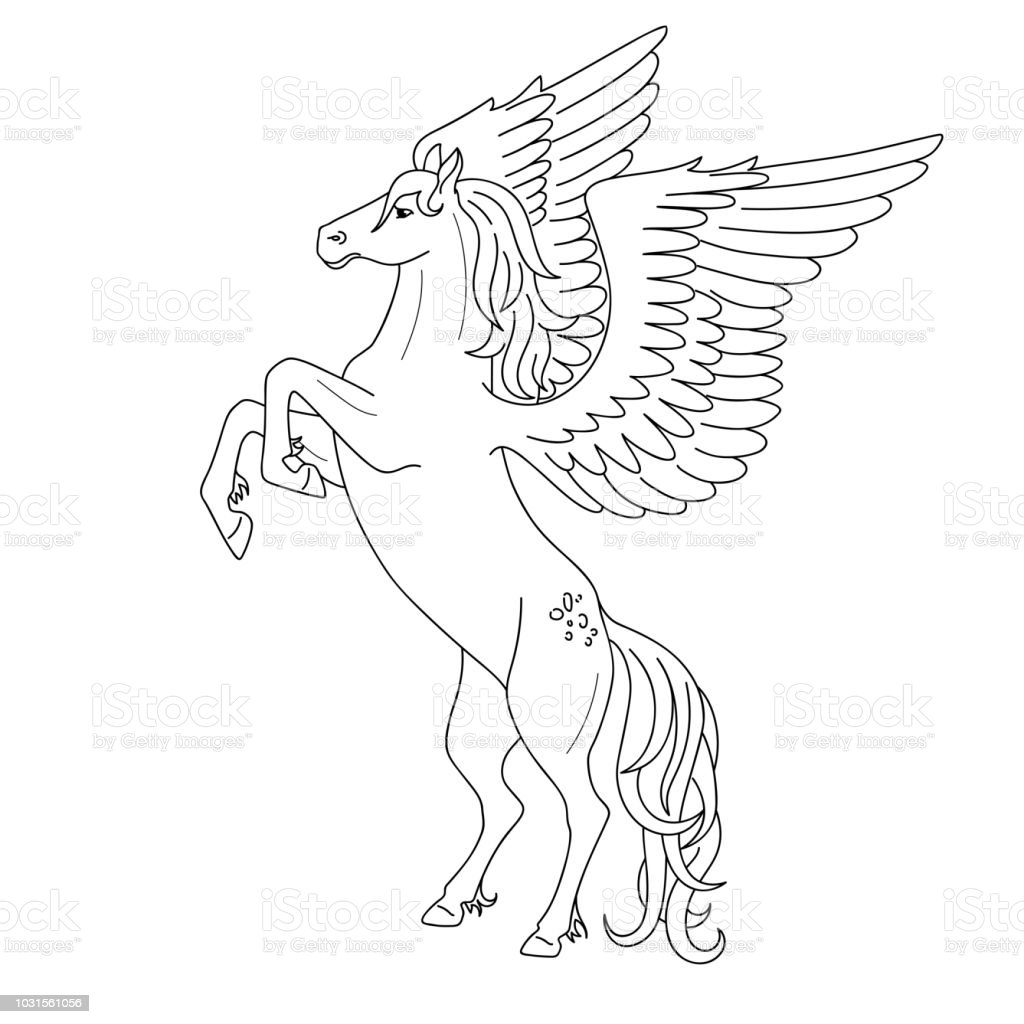 Isolated Black Outline Rearing Pegasus On White Background Side View ...