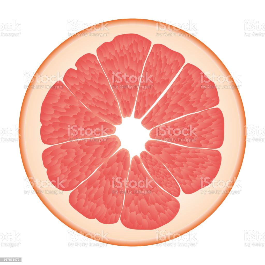 Isolated circle of juicy pink color grapefruit on white background. Realistic colored round slice. vector art illustration