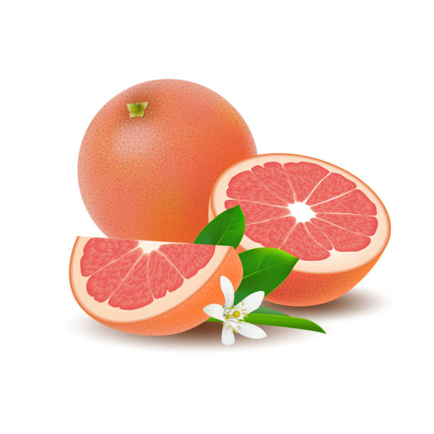 Royalty Free Ruby Grapefruit Clip Art, Vector Images & Illustrations - iStock
