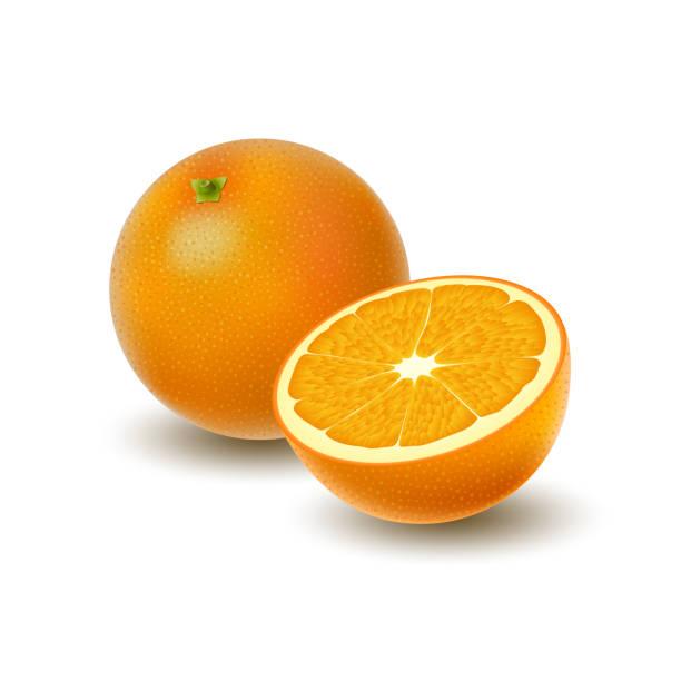 bildbanksillustrationer, clip art samt tecknat material och ikoner med isolerade färgade grupp av orange, halva och hela saftiga frukter med skugga på vit bakgrund. realistiska citrus. - apelsin