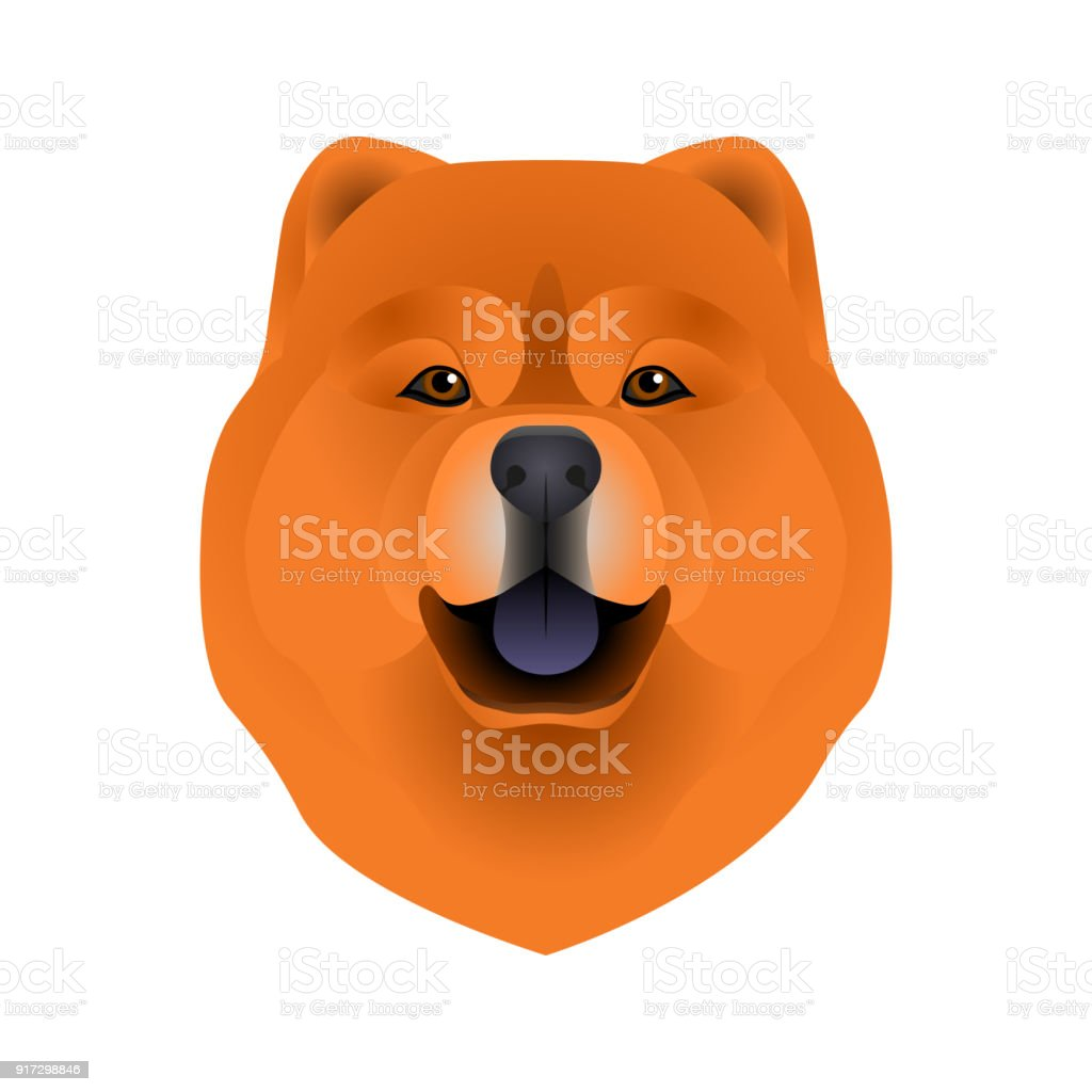 Isolated Colorful Head And Face Of Chow Chow On White Background
