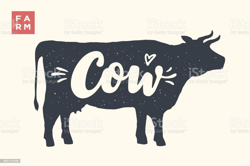 Isolated cow silhouette with lettering vector art illustration