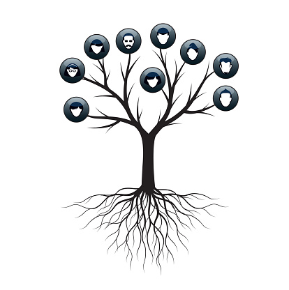Isolated Family Tree on white background. Vector Illustration and concept. Plant and genealogy.