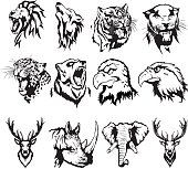 illustration of the head of an eagle, an owl, a deer, a lion, a wolf, a tiger, a panther, a leopard, a bear, a rhinoceros and an elephant