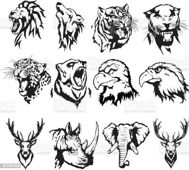 Isolated illustration of the head of an eagle an owl a deer a lion a vector id825891938?b=1&k=6&m=825891938&s=612x612&h=bpl8slgl0z1bf0kvuz6inqxwckz67lkgupfc uwpqty=