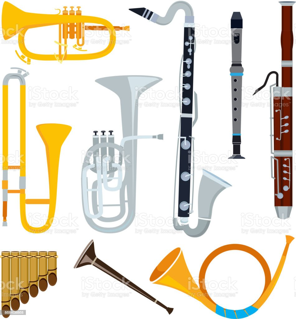Isolated musical instruments in cartoon style vector art illustration