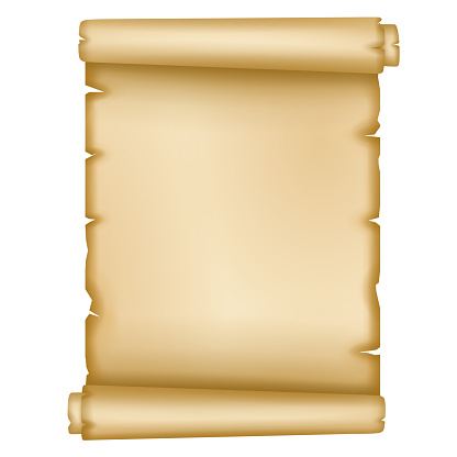 isolated old parchment vector