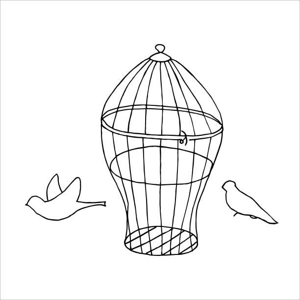 illustrations, cliparts, dessins animés et icônes de isolé sur la cage de fond blanc et les oiseaux illustration stock, vecteur, dessin de main, élément de conception pour l'impression, scrapbooking, carte postale - cage animal nuit