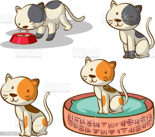 Isolated picture of cats in different poses vector id1187846513?b=1&k=6&m=1187846513&s=612x612&h=c7s52fpxslmgrwo5fd qwidyuxd1h0s6vzdcqvzumvg=