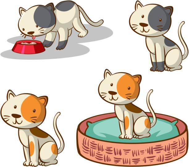 Isoliertes Bild von Katzen in verschiedenen Posen – Vektorgrafik