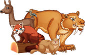 Isolated picture of many animals illustration
