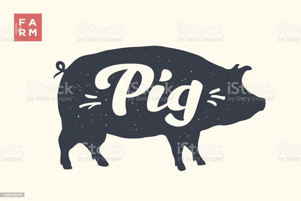 Isolated pig silhouette with lettering vector art illustration
