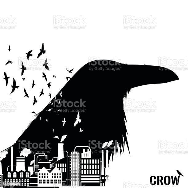 Isolated raven head silhouettes with double exposure effect vector id675196006?b=1&k=6&m=675196006&s=612x612&h=nkd6yeujk trjhqsducof3 n4f0o cwfvgrztptzy4q=