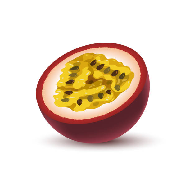 illustrazioni stock, clip art, cartoni animati e icone di tendenza di isolated realistic colored half of juicy purple passion fruit with shadow on white background. - passiflora