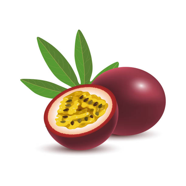 illustrazioni stock, clip art, cartoni animati e icone di tendenza di isolated realistic colored whole and half of juicy purple passion fruit and green leaf with shadow on white background. - passiflora