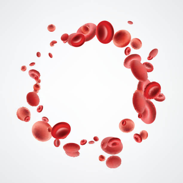 Isolated red streaming blood cells. Red 3d streaming blood cells isolated on white background. Vector illustration. red blood cell stock illustrations