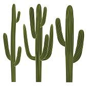 Isolated Saguaro Cactus Set. Vector illustration