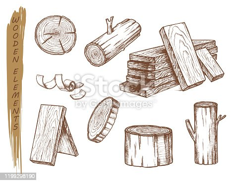 Isolated sketch of wooden elements. Set of vintage tree log and stump, hardwood chips and timber trunk, bark and sub, flinders and cork, plank. Lumberjack and firewood, fireplace and wood theme