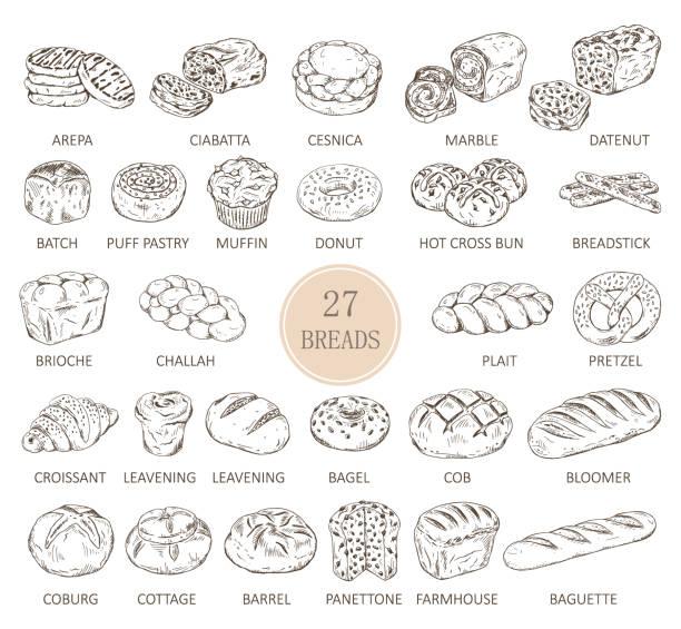 illustrations, cliparts, dessins animés et icônes de croquis isolés de types de pain - boulanger