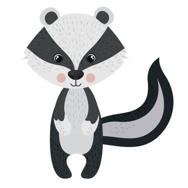 isolated skunk cartoon design - skunk stock illustrations