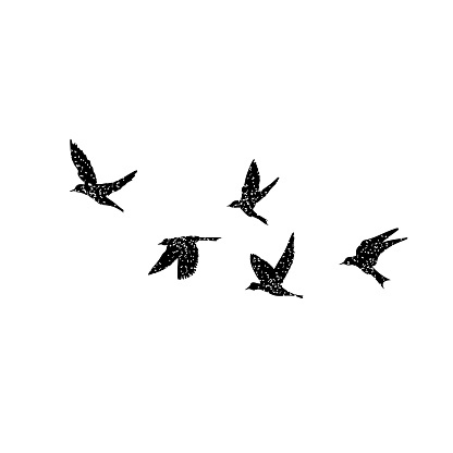 Isolated textured stipple silhouette of birds flock in the air Inspirational body flash tattoo ink. Vector.