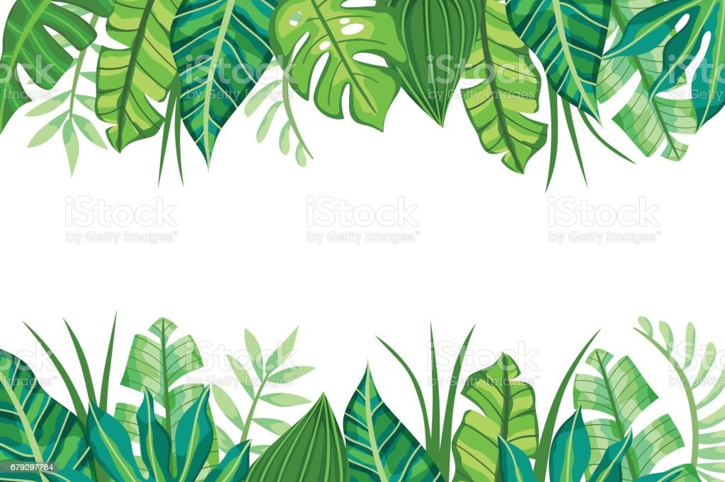 Isolated Tropical Background design. Vector illustration. royalty-free isolated tropical background design vector illustration stock vector art & more images of backgrounds