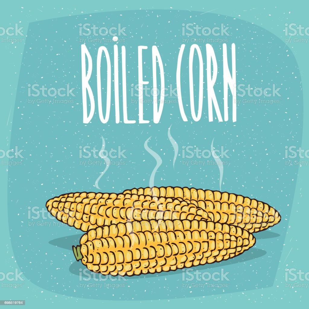 Isolated whole boiled corn ears with hot steam vector art illustration