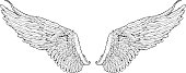 isolated wings graphic style