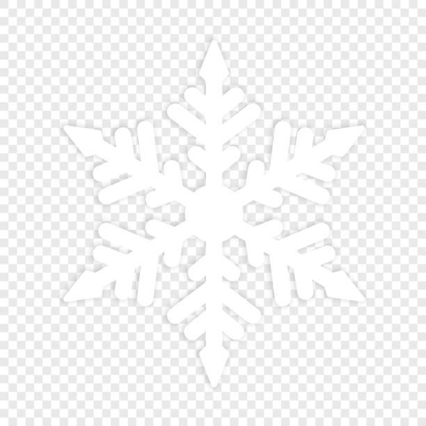 stockillustraties, clipart, cartoons en iconen met geïsoleerde winter snowflake. element - snowflakes