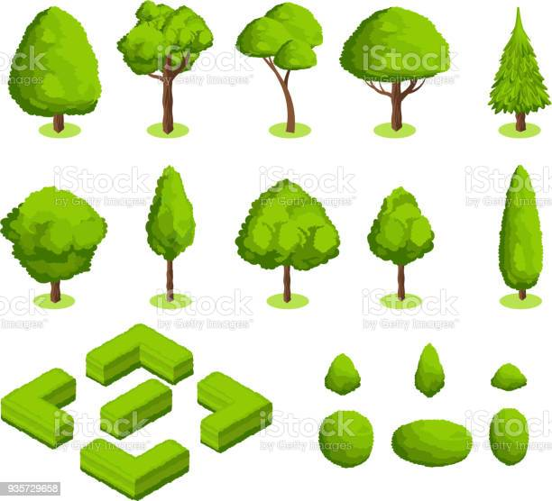 Isometric 3d vector park and garden trees and bushes green forest vector id935729658?b=1&k=6&m=935729658&s=612x612&h=ehcnwspff6r7zbacfvxqifs bv f z5kvhcvfonx9xq=