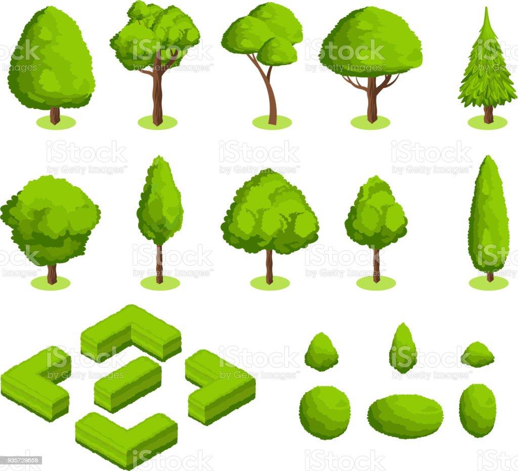 等尺性 3 d ベクトルの公園と庭園の木々 や茂み。緑の森の植物コレクション ベクターアートイラスト