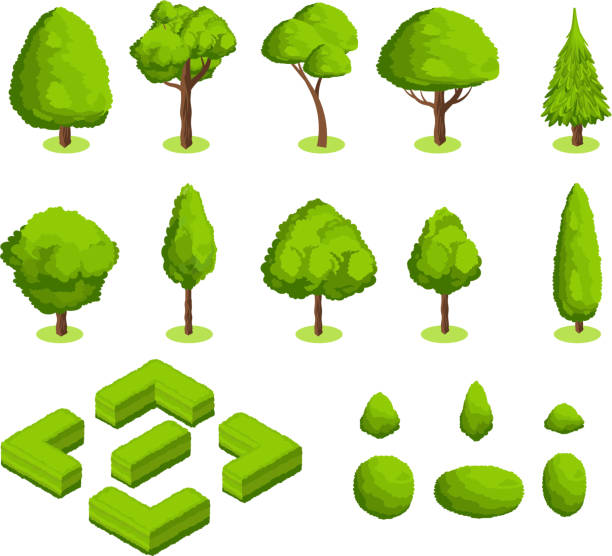 isometric 3d vector park and garden trees and bushes. green forest plants collection - куст stock illustrations
